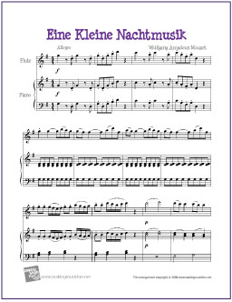 Anyone have the sheet music for an amazing flute solo?